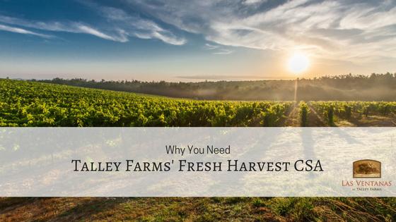 talley farms' csa program